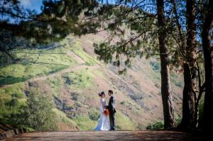 casamento Vivian & Thiago