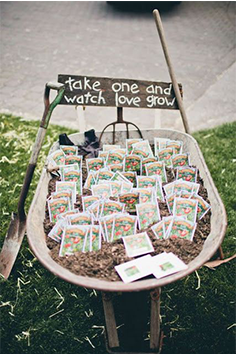 sementes-de-flores-para-lembrancinha-de-casamento