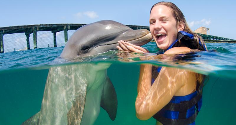 nado-com-golfinhos-punta-cana