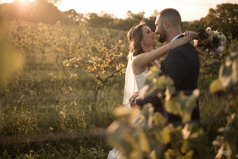 Casamento em uma vinícola ao ar livre – Aline & Lucas