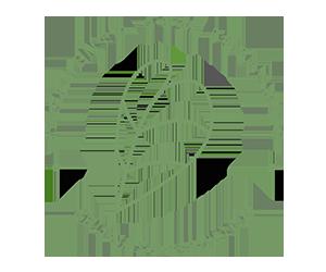 #eucasoeucuido